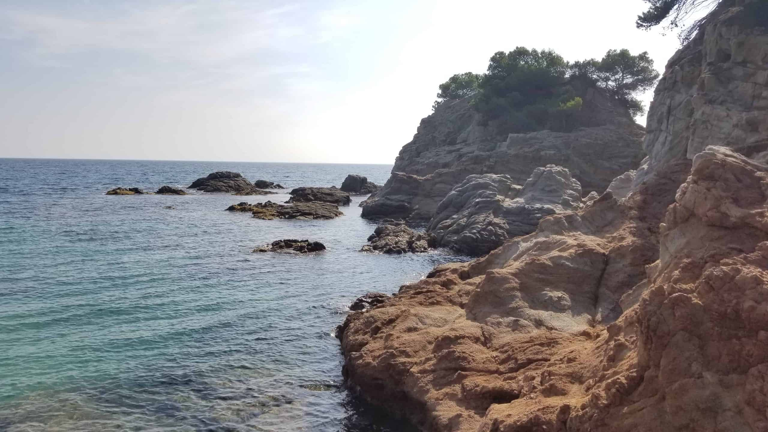 Diving area near Platja de Fenals.